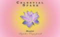 Celestial Spark (Reiki) Workshop Jan 2019 Batch